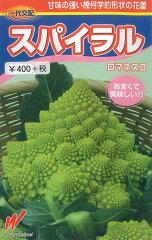 【メール便対応可能】野菜種 ロマネスコ スパイラル 30粒 一代交配