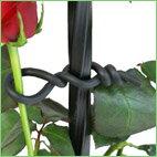 第一ビニール ローズスタイル バラ用やわらかバンド φ2.5mm×10m 05P09Jan16