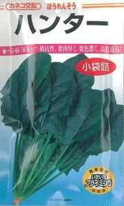 【ゆうパケット対応可能】野菜種 ホウレンソウ ハンター 50ml P16Sep15
