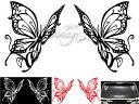 Butterflyw-1