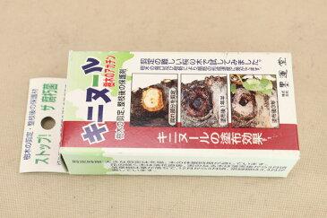 【キニヌール 50ml】樹木用切り口の保護剤 (盆栽 いよじ園)