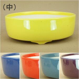 [Bonsai pot] Kyo ware colored small bowl cut vertical round bowl (medium) (caliber: 11.5 cm) [Iyojien Iyojien]