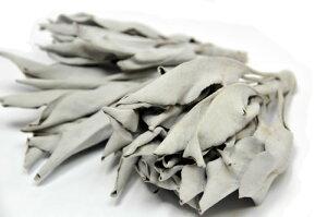 ホワイトセージ100g 高品質クラスター(葉&枝)浄化用カリフォルニア産 野生種