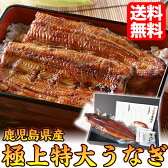 【父の日ギフト】うなぎ国産蒲焼き特大230g以上1尾プレゼント父の日のプレゼント食品食べ物