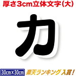 3cm厚カルプ文字(大)/タテ30cm×ヨコ30cmまで