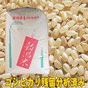 令和元年産 新潟県産 残留農薬分析済み コシヒカリ 玄米10kg 【精米無料】【nk_fs_0629】