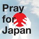 楽天ポイントを募金しよう東北地方太平洋沖地震義捐金 (東日本大震災義援金)Pray for Japan緊...
