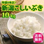 【送料無料】特選A地区!新潟こしいぶき10kg