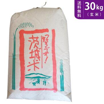 【送料無料】30年産!新米 茨城県産ミルキークイーン 玄米30kg【smtb-TD】【saitama】