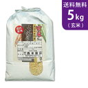【送料無料】令和2年産 玄米 魚沼産コシヒカリ 5kg 十日町地区 最高級 ギフトにおすすめ♪【smtb-TD】【saitama】