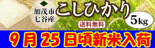新潟県加茂市七谷地区棚田米こしひかり白米10kg