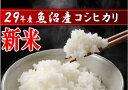 29年度産 【送料無料】魚沼産コシヒカリ 5Kg 5キロ 米 新潟