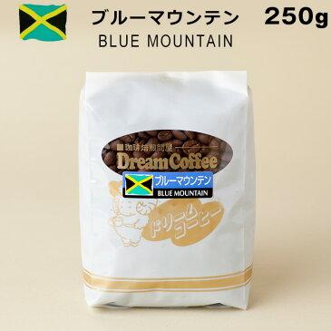 コーヒー豆 ブルーマウンテン ブルマン 100% 250g コーヒー 珈琲 【メール便送料無料】