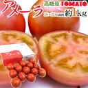 """プロも惚れ込む!フルーツのように甘い高糖度トマトです!!静岡県産 """"高糖度フルーツトマト ..."""