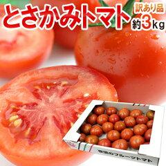 濃い〜お味のフルーツトマトです♪【送料無料】青空レストランで高知のフルーツトマトが紹介!...