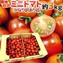 """【緊急スポット】""""ミニトマト"""" かなり訳あり 約3kg 大き"""