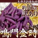 """徳島県産 """"鳴門金時"""" 訳あり 約10kg 大きさおまかせ さつまいも【予約 9月以降】 1"""