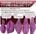 """徳島県産 """"鳴門金時"""" 訳あり 約10kg 大きさおまかせ さつまいも【予約 9月以降】 3"""