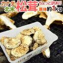 """【緊急スポット】カナダ・北米産 """"松茸"""" 約1kg 原体・ほ..."""