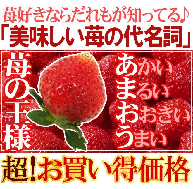 福岡県産『博多あまおう』