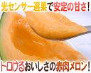 """【送料無料】北海道 赤肉メロン """"らいでんレッドメロン"""" 4〜5玉 約8kg 産地箱【予約 8月下旬以降】"""