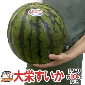 ジャンボ大栄すいか 訳あり 特大5Lサイズ 約10~11kg 大栄西瓜