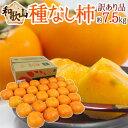 """【送料無料】和歌山産 """"たねなし柿"""" 訳あり 約7.5kg ..."""