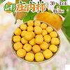 """山形県産""""庄内柿訳あり約5kg"""""""