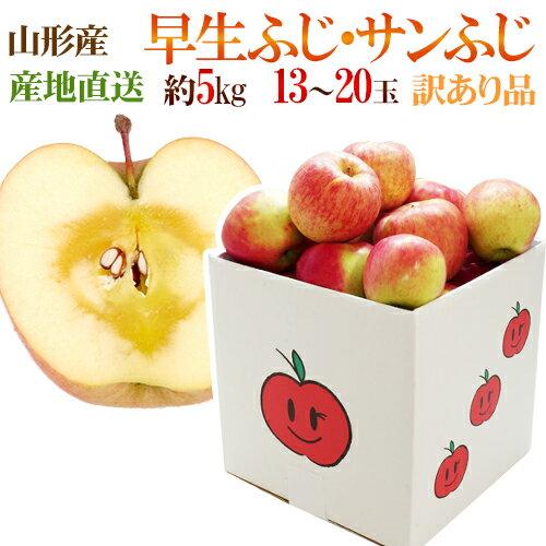 フルーツ・果物, りんご  5kg 91