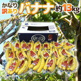 """【緊急スポット】""""バナナ"""" 約13kg 訳あり【11月4日以降発送】 送料無料"""