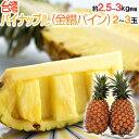 """""""甘熟台湾パイン"""" 2〜3玉 約2.5〜3kg パイナップル"""
