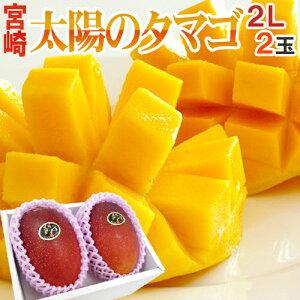 宮崎完熟マンゴー 太陽のタマゴ 大玉 2Lサイズ 2玉