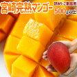 """訳あり """"宮崎完熟マンゴー"""" 1個500g以上の超特大4Lサイズ 4個以上ご購入で送料無料!8個以上で1個おまけ♪【予約 5月下旬〜8月】"""