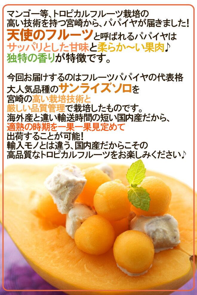 JA宮崎中央『宮崎パパイヤサンライズソロ3~4玉約2kg』