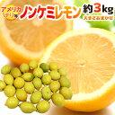 """【送料無料】チリ・アメリカ産など """"ノンケミレモン"""" 大きさ..."""