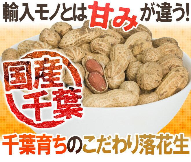 千葉豆乃華『千葉県産殻付落花生』