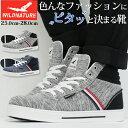 【送料無料】 スニーカー メンズ 25.0-28.0cm 靴 男性 ハ...