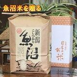 美味しいお米魚沼産コシヒカリ