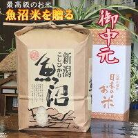 お中元米魚沼産コシヒカリ一等米白米10kg(当地生産農家のお米)3650円