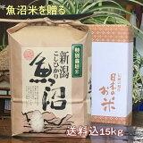 魚沼産コシヒカリ一等米白米5kg(当地生産農家のお米)3650円