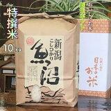 新米 米 魚沼産コシヒカリ 2020 特選米 白米 10kg 特A 当地 農家 おいしいお米 直販(送料込)