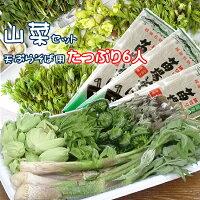 山菜セット天ぷらそば