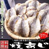 焼きあじ おつまみ珍味 お試しサイズ 80g そのまま食べれる小魚カルシウム アジの燻製 干物 焼きこあじ 小アジ こんがり焼きあじ 炙り 乾燥 乾物 乾き物 送料込み ポイント消化 楽天ポイント利用 おつまみ