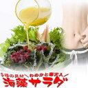 海藻サラダ 乾燥 たっぷりサイズ めかぶと寒天入 海藻スープ お吸い物にも みそ...