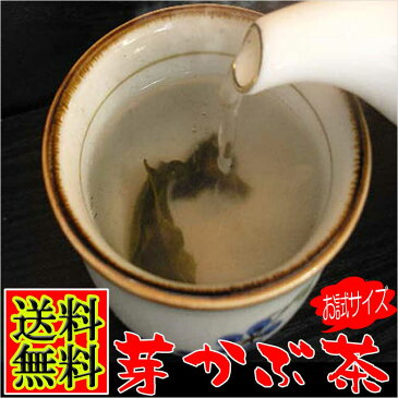 めかぶ茶 お試しサイズ 乾燥メカブのお茶 みそ汁 芽かぶスープ お吸い物 健康茶 焼酎割り めかぶ 根っ子の乾燥のお茶 芽かぶ茶 腸活 水溶性食物繊維 海藻 送料無料 送料込み お試し 食品 楽天 ポイント利用 月末 ポイント消化 クーポン獲得 使い方