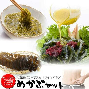 送料無料 乾燥めかぶ・海藻サラダ(寒天入)メガ盛りセット みそ汁・めかぶスープ お吸い物にも 芽かぶのヌルヌルが効く 腸活 水溶性食物繊維 海藻 無添加