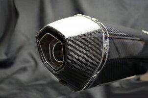 SS900SS1000DSSS800SS750LCIカーボンエンドスリップオンサイレンサー