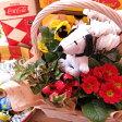 母の日 ギフト スヌーピー お届け 鉢植えギフト フラワーギフト  お花はデザイナーにおまかせ♪ スヌーピーストラップ入り ◆大切なお母さんを笑顔にしちゃう魔法のフラワーギフト♪