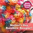 母の日 プレゼント レインボーカーネーション 30本花束 ◆母の日ギフト限定品
