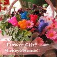 ディズニー ミッキー ミニー入り 鉢植え フラワーギフト 季節のお花お任せギフト♪ ミッキー ミニー マスコット5個入り 母の日 花鉢 プレゼント